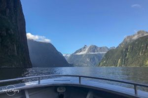Croisière dans le fjord
